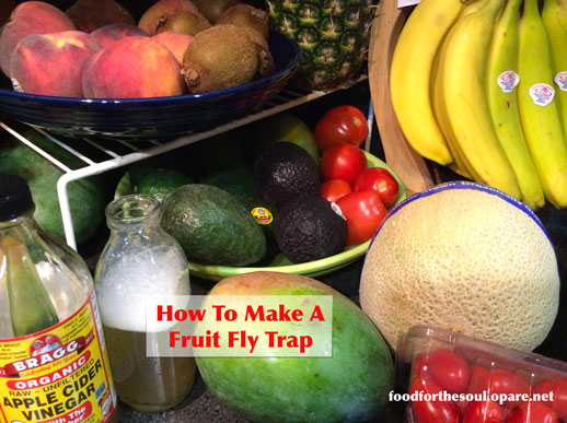 fruit fly traps fruit or vegetable
