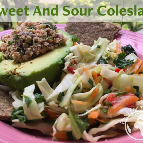 vegan sweet and sour coleslaw